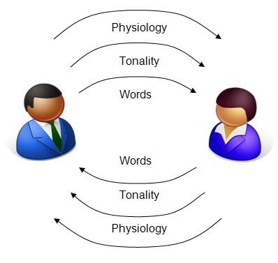 اصول زبان بدن، دی ان ای در مهندسی ذهن و ان ال پی در بازاریابی، تبلیغات و ارتباطات