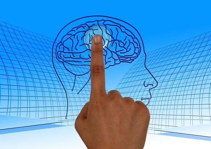 اصل سطوح عصبی - زبانی در مهندسی ذهن و ان ال پی در بازاریابی، تبلیغات و ارتباطات