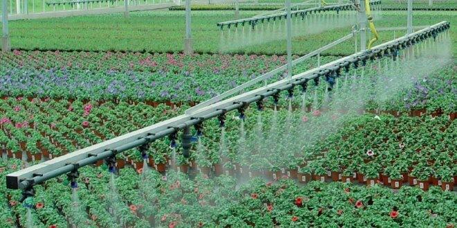 نحوه آبیاری گلخانههای پرورش گل و گیاهان زینتی