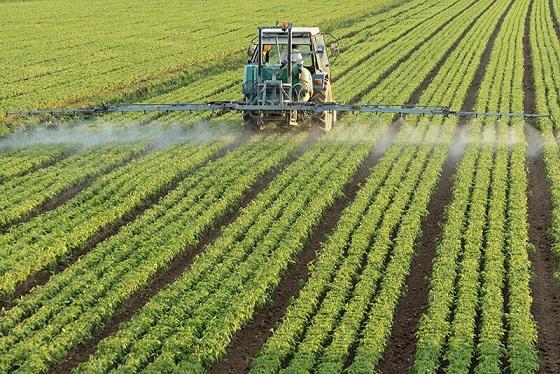 آشنایی با طرح توجیهی کشاورزی